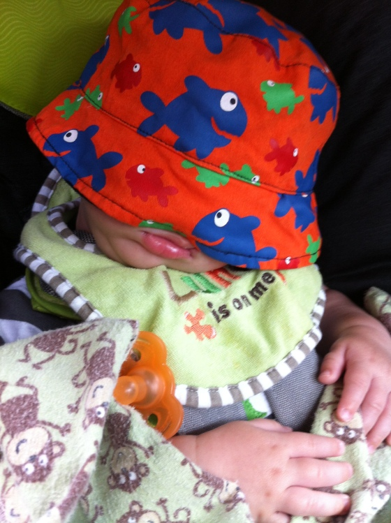 D crashed out in the car on the way to D's softball game. And he's rocking his adorable new hat from Tia.